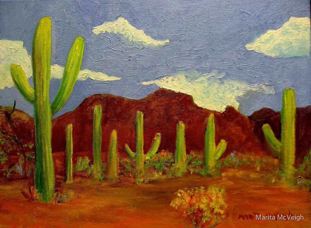 Arizona lll by Marita McVeigh