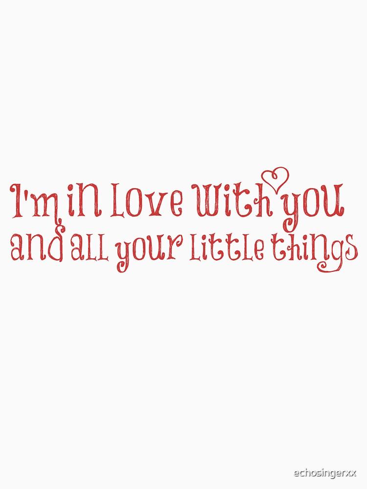 """""""Little Things""""  by echosingerxx"""