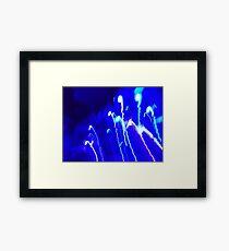 Domestic Lightning  Framed Print