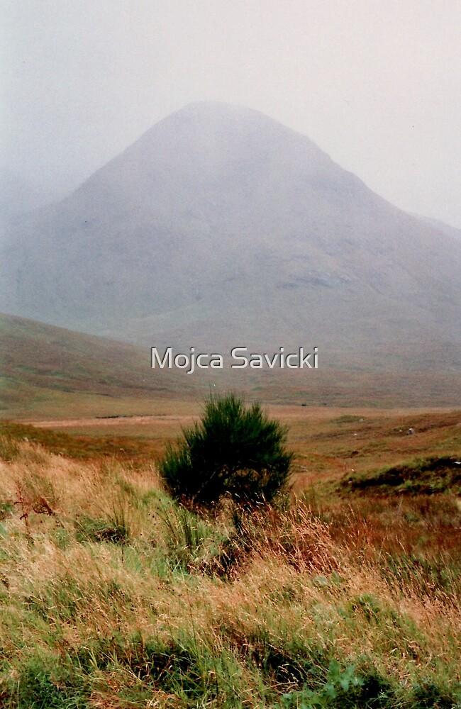 Mist Covered Mountain by Mojca Savicki