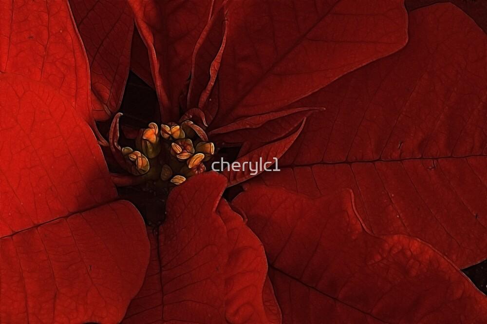 Justjen's Poinsettia! by cherylc1