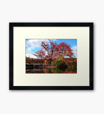 Wellesley, MA Framed Print