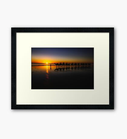 Cable Beach Camels Framed Print