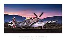"P-51 Mustang ""Sizzlin Liz"" by Kristoffer Glenn Pfalmer"
