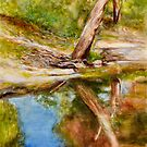 Darebin Creek Gum Tree by Dai Wynn