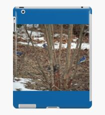 Give it up, Fuzzy-tail, you're surrounded! iPad Case/Skin