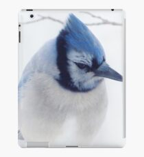 A  Blue Afternoon iPad Case/Skin