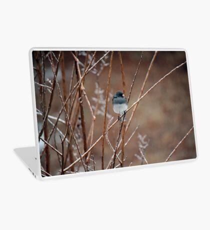Icy Snowbird Laptop Skin