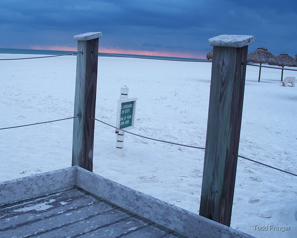 beach sentry's at dusk by Todd Fringer