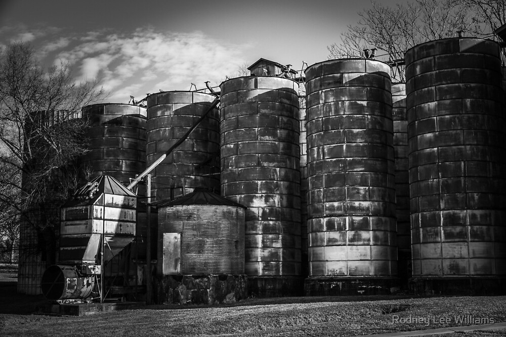 Central Roller Mill 3 by Rodney Williams
