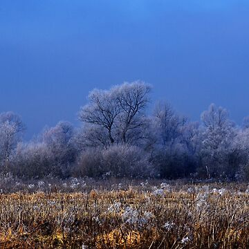 Winter Landscape Photography by borisow