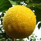 Fresh lemonade by MarianBendeth