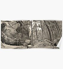 Ash Cave Panorama At Hocking Hills Ohio Black And White Poster