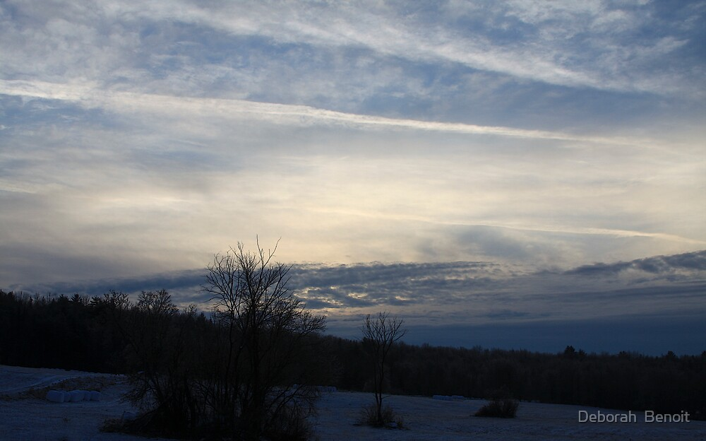 Crisp December Morning Sky by Deborah  Benoit