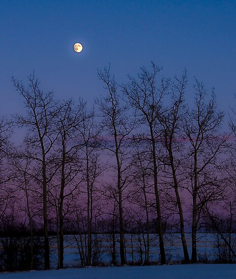 Northern Colors by peaceofthenorth
