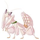 Orchid Mantis by Markaleb