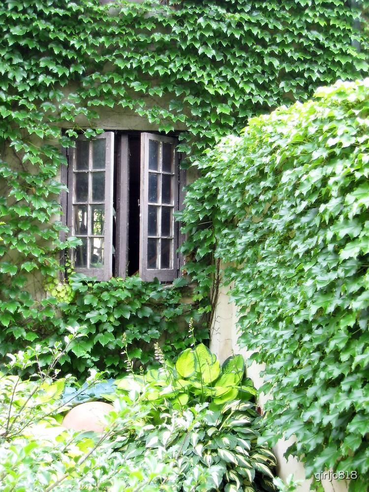 The Window by girljo818