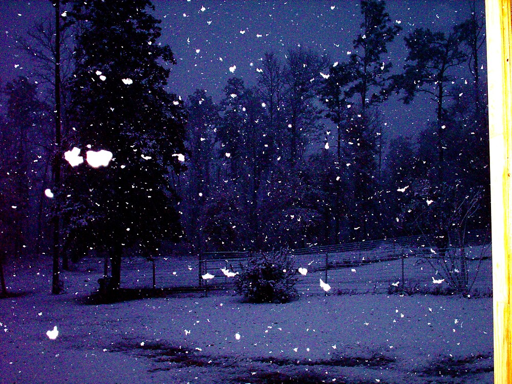 IT'S SNOWINGING BUSH, LOUISIANA by talindsey