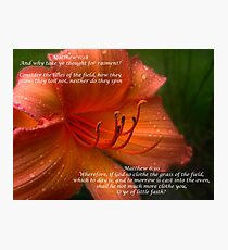Matthew 6:28 Photographic Print