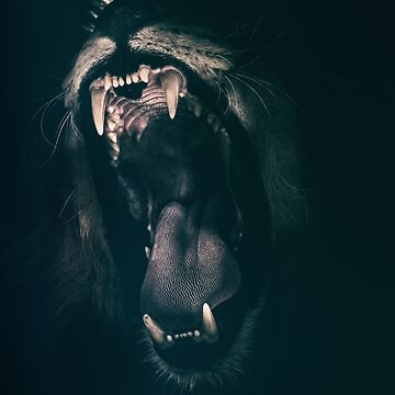LION by jonce