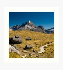 mountains on routeburn track Art Print