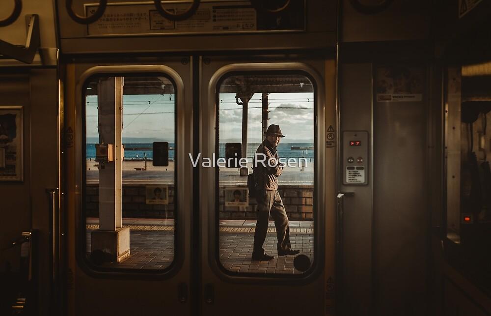 Suma Station by Valerie Rosen