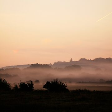 foggy morning by kolografie