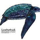 Leatherback Sea Turtle by Artwork by Joe Richichi