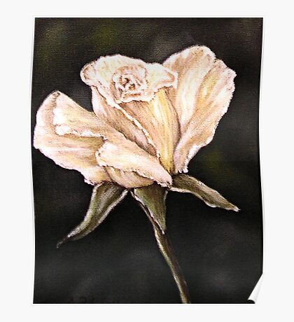 """White Rose"" - Oil Painting Poster"
