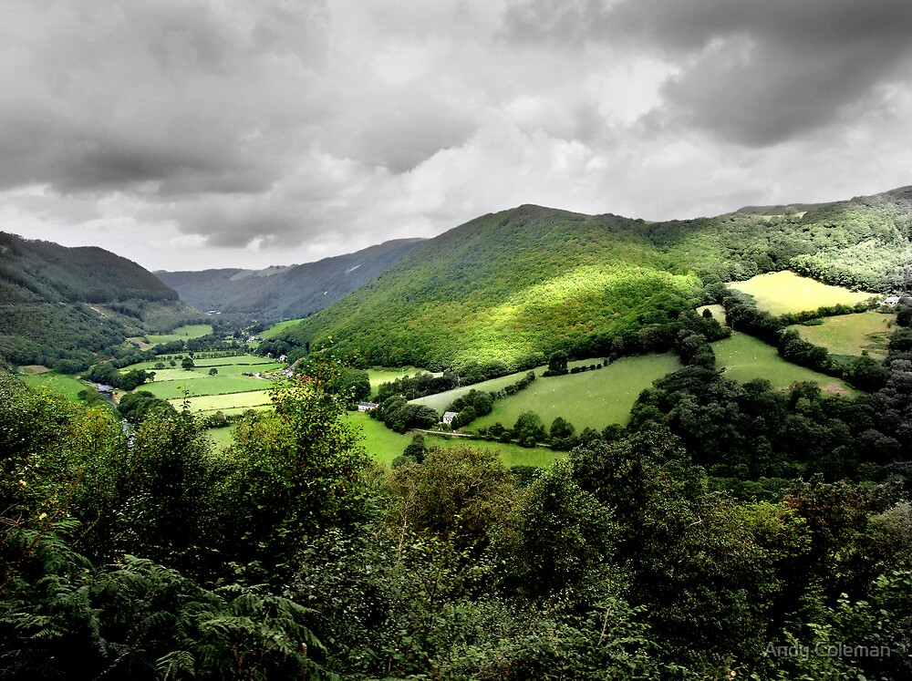 Vale of Rheidol by Andy Coleman