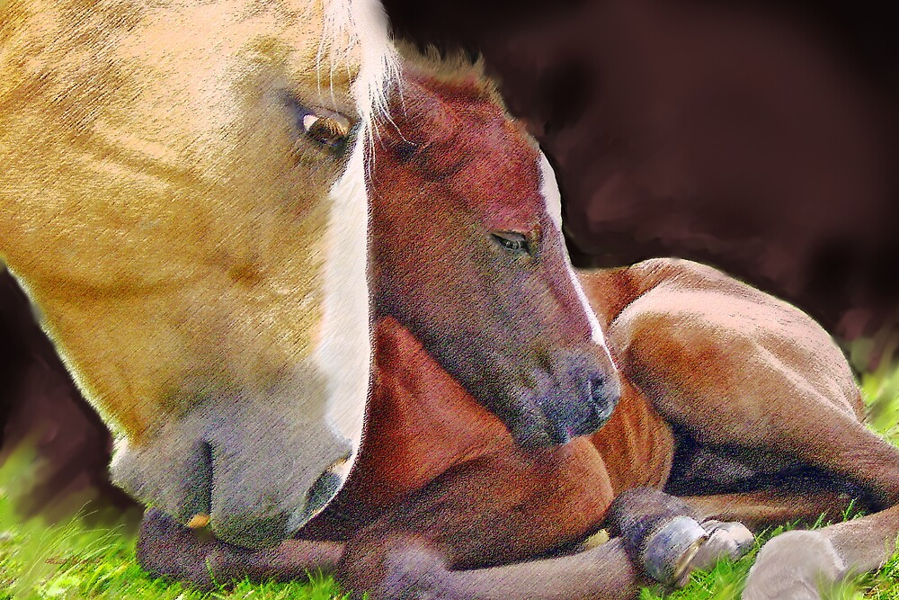 Mother Love by Christi Werner