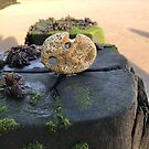 Stones with holes by neon-gobi