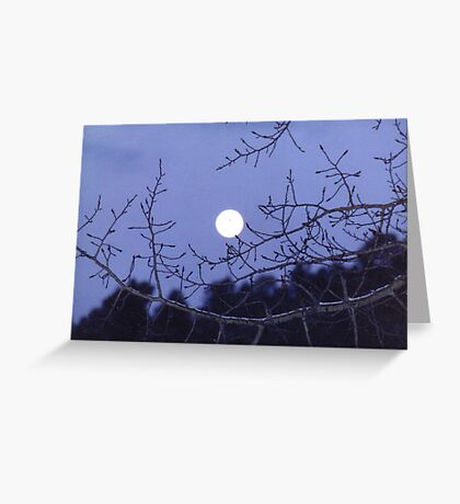 On a Cold Snowy Night Greeting Card