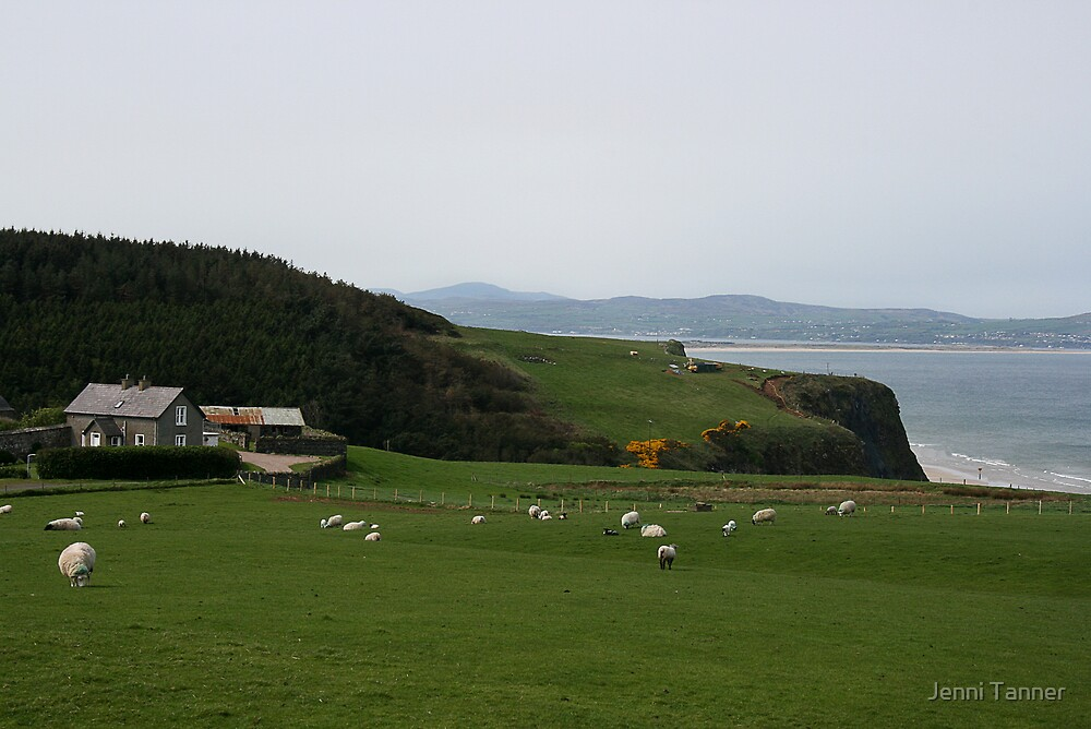 Ireland Bayview by Jenni Tanner
