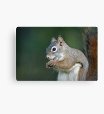 I know, too much eyeliner!!! Canvas Print