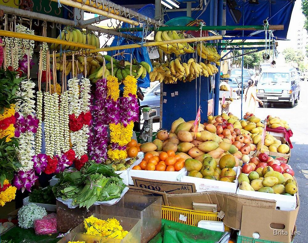 Flower Garlands and Fruit by Brita Lee