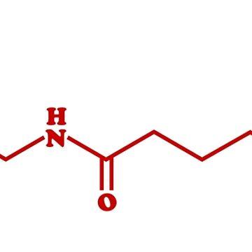 Chili Capsaicin Molecular Chemical Formula by tinybiscuits