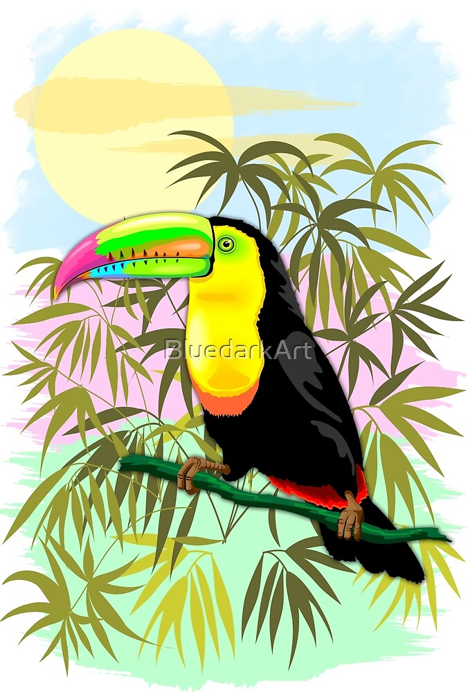Toucan Wild Bird from Amazon Rainforest by BluedarkArt
