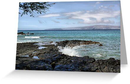 Ahihi Bay, Maui, Hawaii by Teresa Zieba