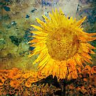 Ah Sun-flower! weary of time by WesternExposure