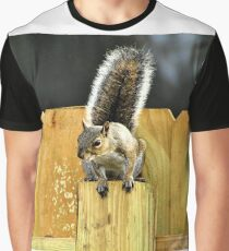 Squirrel On A Fence Post - Florida Graphic T-Shirt