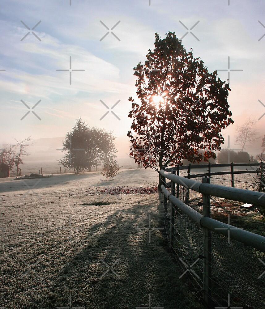 Autumn Mist by Geoff Carpenter