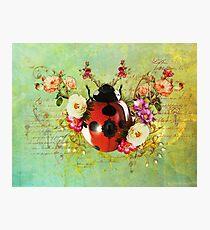 Lady Bug Luck Photographic Print