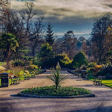 Sheffield Botanical Gardens by shanerounce