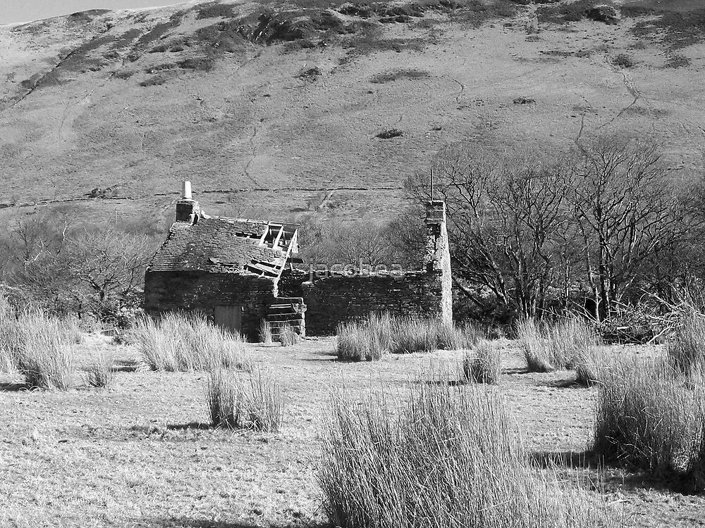 A Ruined Lochranza Cottage  by jacobea