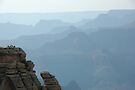 Hazy View - Grand Canyon National Park by Brendan Schoon
