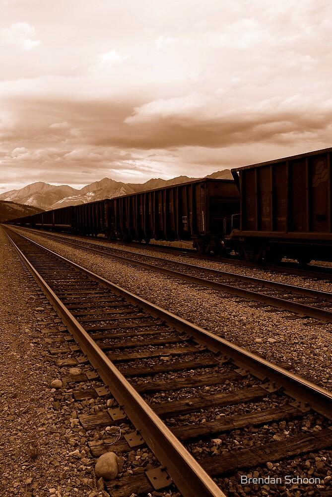 Train by Brendan Schoon