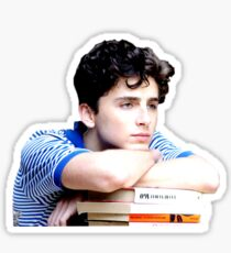 Timothée Chalamet - Elio and his books Sticker