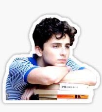 Timothée Chalamet - Elio und seine Bücher Sticker