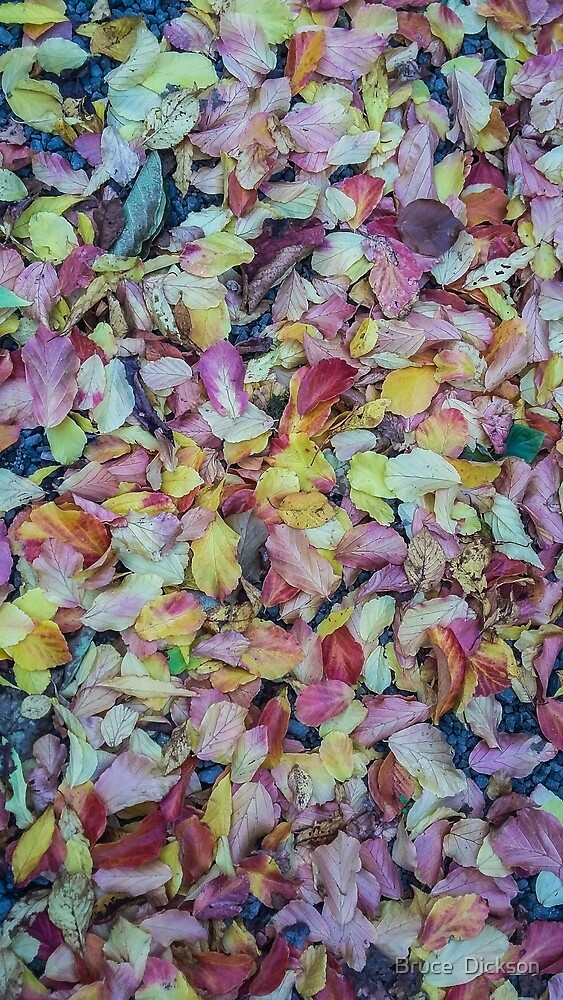 fall mosaic 3 by Bruce  Dickson